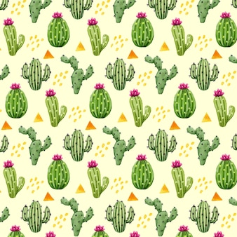 Creative pattern with cactus plants