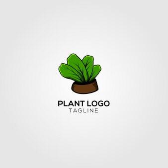 Creative plant logo