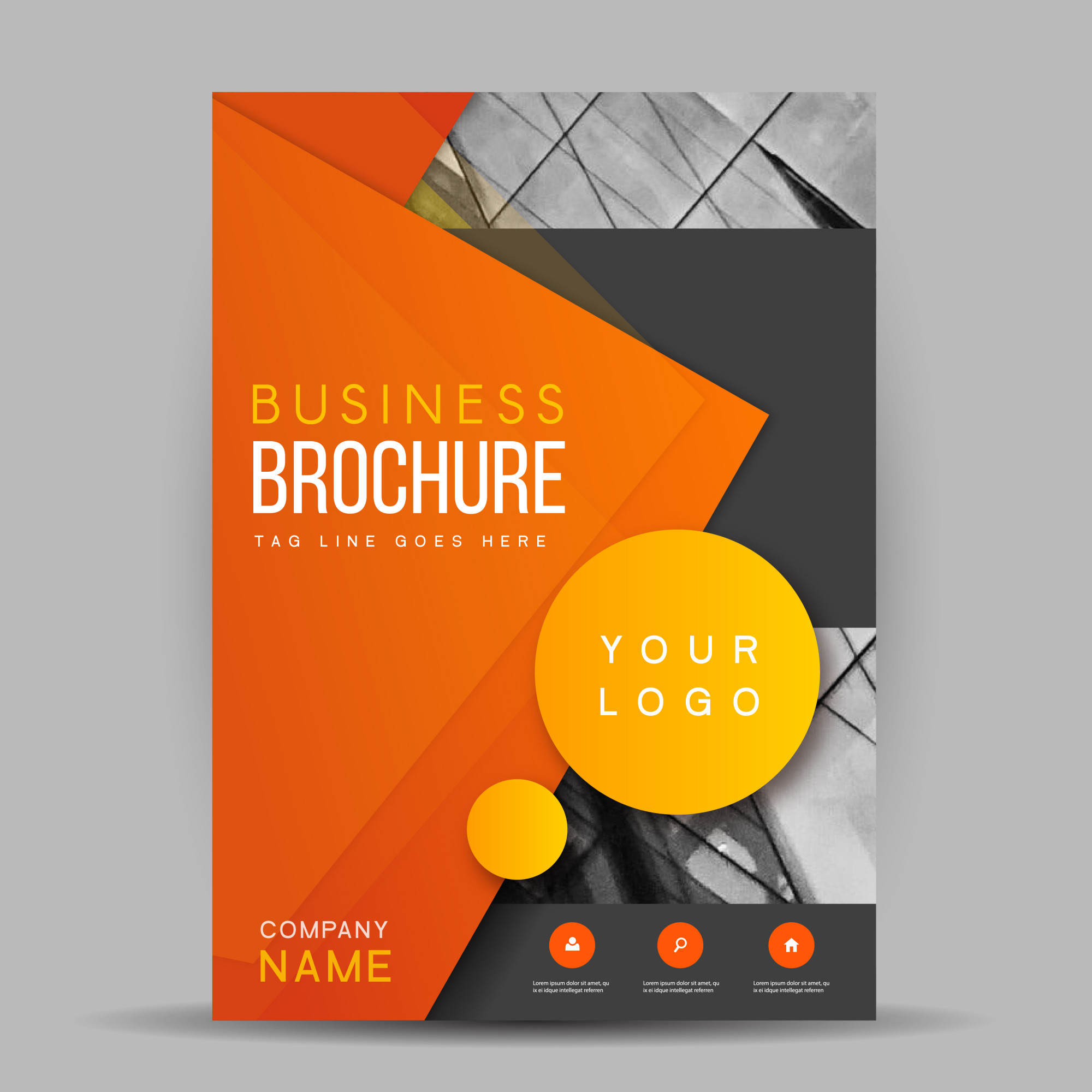 Creative Vector Brochure Template Design
