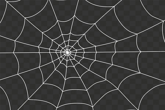Creepy spiderweb