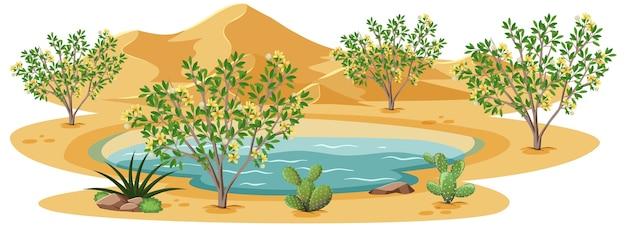 Креозотовый куст растений в дикой пустыне на белом фоне
