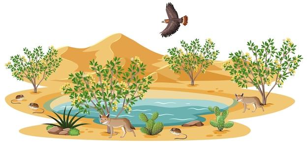 Креозотовый куст растений в дикой пустыне на белом