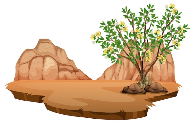 Creosote bush plant in wild desert on white background