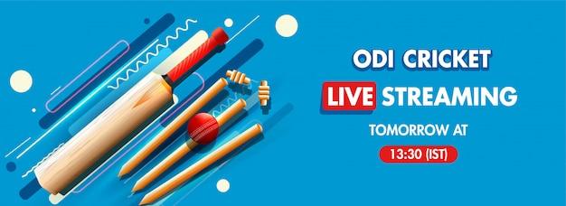 Cricket concept banner.