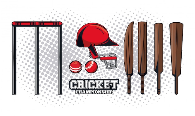 Cricket equipment player