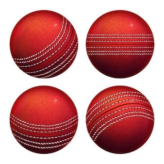 Cricket leather ball sportive equipment set
