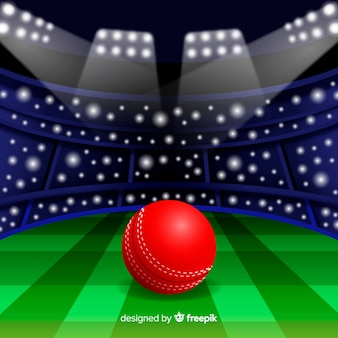 Cricket stadium background in flat design