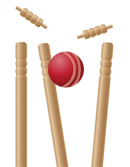 Criket wickets and ball vector illustration