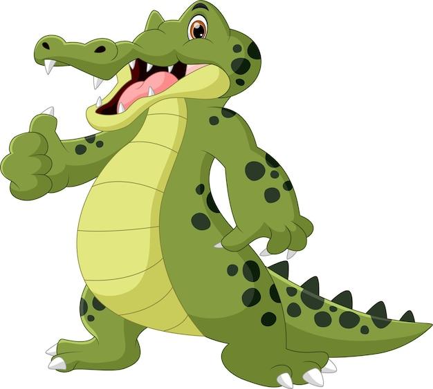 Crocodile cartoon thumbs up on white background