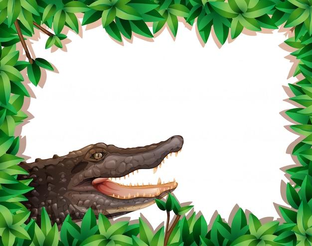 Crocodile in nature scene with copyspace