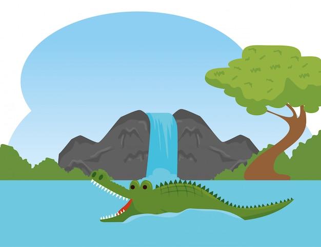 川の保護区でワニ野生動物