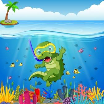 Crocodiles snorkeling underwater sea