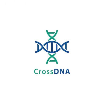 Cross DNA
