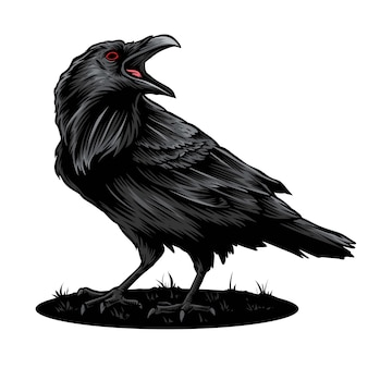 Crow vector and illustration logo