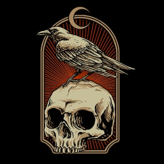 Crow with skull   illustration