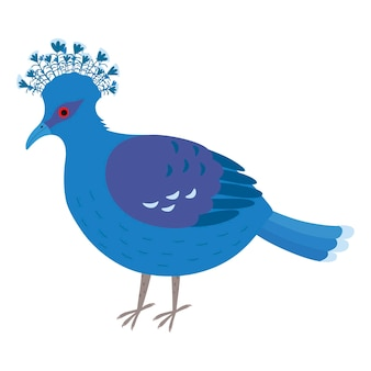 왕관을 쓴 비둘기. 머리에 부채가 달린 파란 비둘기