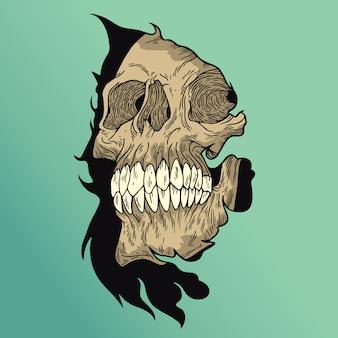 Croz skull
