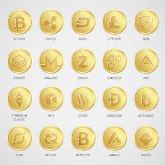 Cryptocurrency business money bitcoin icon vector