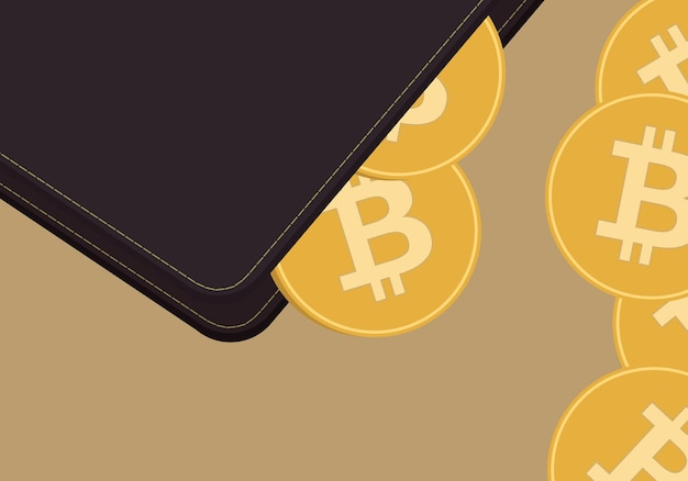 Cryptocurrency wallet and coin illustration with cryptocurrency symbol