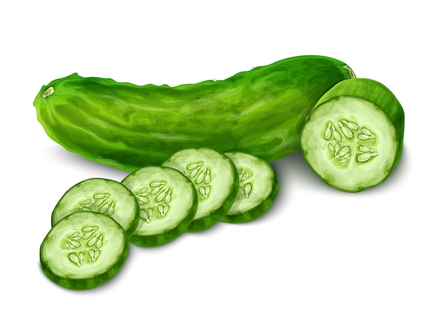 2283e81522 Cucumber Vectors, Photos and PSD files | Free Download