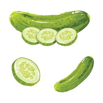 Cucumber realistic