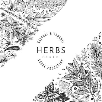 요리 허브 배너 템플릿입니다. 손으로 그린 빈티지 식물 그림. 새겨진 스타일. 빈티지 음식 배경입니다.