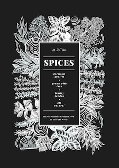 Culinary herbs and spices  template. hand drawn vintage botanical illustration