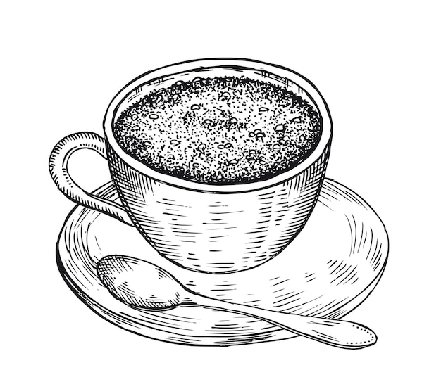 Cup of coffee hand drawn illustration
