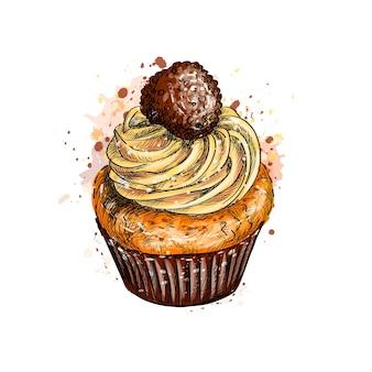 水彩のスプラッシュからクリームとカップケーキ、手描きのスケッチ。塗料のイラスト