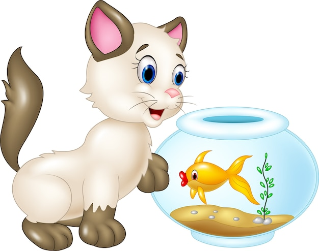 Curious cat with swimming fish isolated on white background