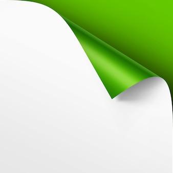 그림자가있는 백서의 가장자리가 웅크 리고 밝은 녹색 배경에 고립 닫습니다.