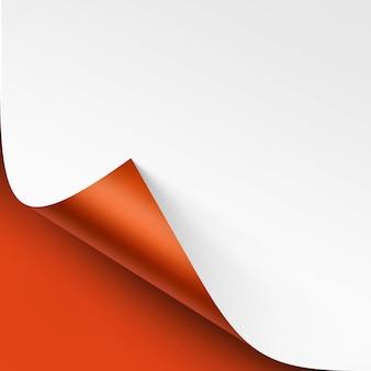 그림자와 함께 흰 종이의 컬된 모서리