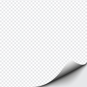 Curled corner of paper on transparent background with soft shadows, realistic paper page mock up.