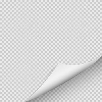 Curled corner of paper.