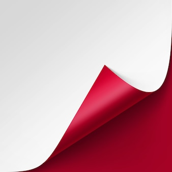 Curled corner of white paper on red background