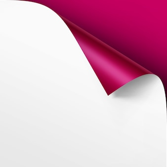 Curled corner of white paper with shadow mock up close up isolated on bright pink magenta background