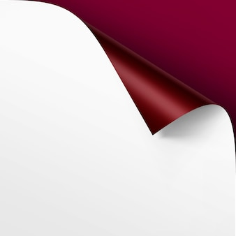 Curled corner of white paper with shadow mock up close up isolated on vinous background