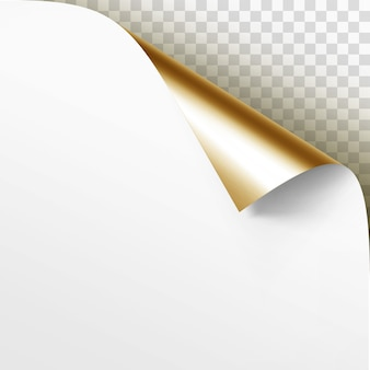 그림자와 함께 백서의 컬된 골든 코너를 닫습니다.