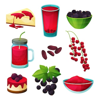 Currant berry food, blackcurrant and redcurrant products