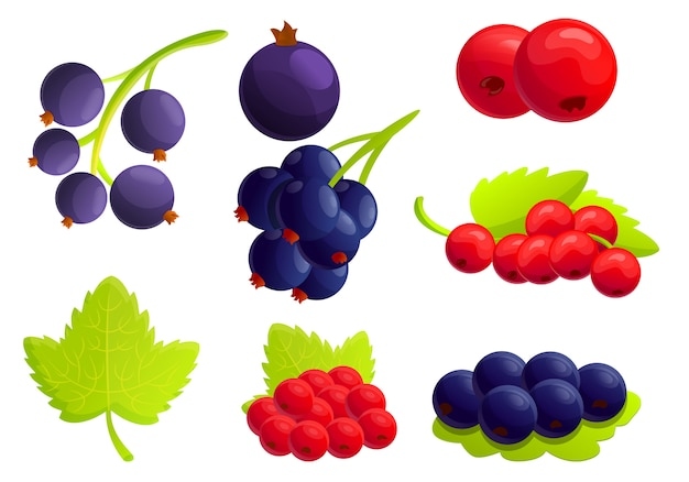 Currant berry icons set, cartoon style