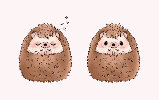 Cute and adorable hedgehog illustration.