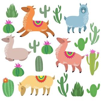Cute alpaca lamas. wildlife llama characters