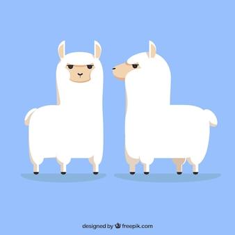 Cute alpacas background