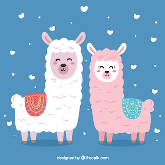 Cute alpacas background