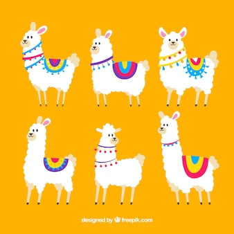 Cute alpacas collection