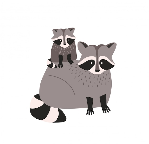 Cute amusing raccoon with cub isolated. family of funny adorable wild forest carnivorous animals.