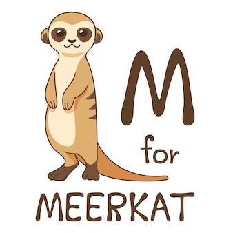 Cute animal alphabet series m is for meerkat for kids. vector cartoon character design illustration.
