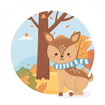 Cute animal in autumn season