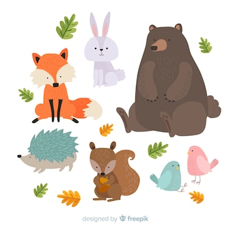 Cute animal collection with big bear