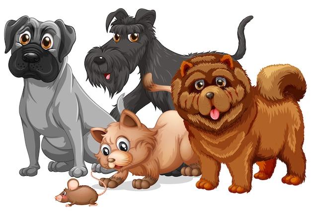 흰색 배경에 고립 된 귀여운 동물 개 그룹